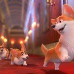 Weer een fijne biosoopfilm voor de kinderen: Corgi ('The Queen's Corgi')