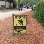 Dinosaurussen kijken in Dinoland (al was er nog veel meer te doen)