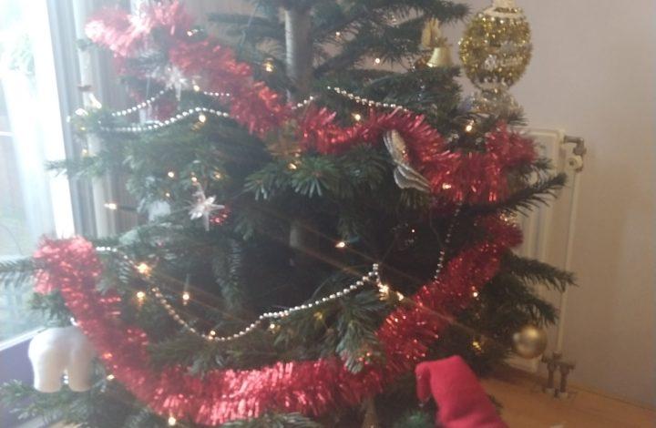 kerstboom 2019