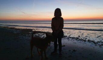 Centerparcs Zandvoort - strand 1