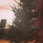De kerstboom staat (en 't kreng staat niet eens scheef)