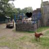Wat een leuke kinderboerderij: De Naturij in Drachten