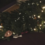 Geen scheve kerstboom, maar een omgevallen kerstboom.