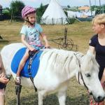 Help. Mijn dochter wil paardrijden!