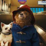 Nu op Videoland: de heerlijke kinderfilm Paddington