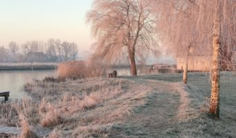 winterlandschap - danielle spoelstra